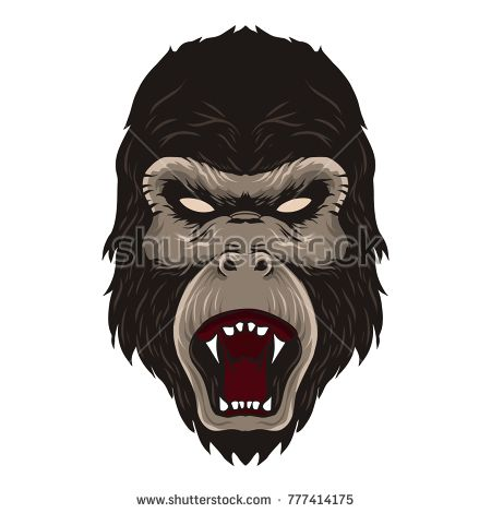 Head of gorilla illustration vector isolated