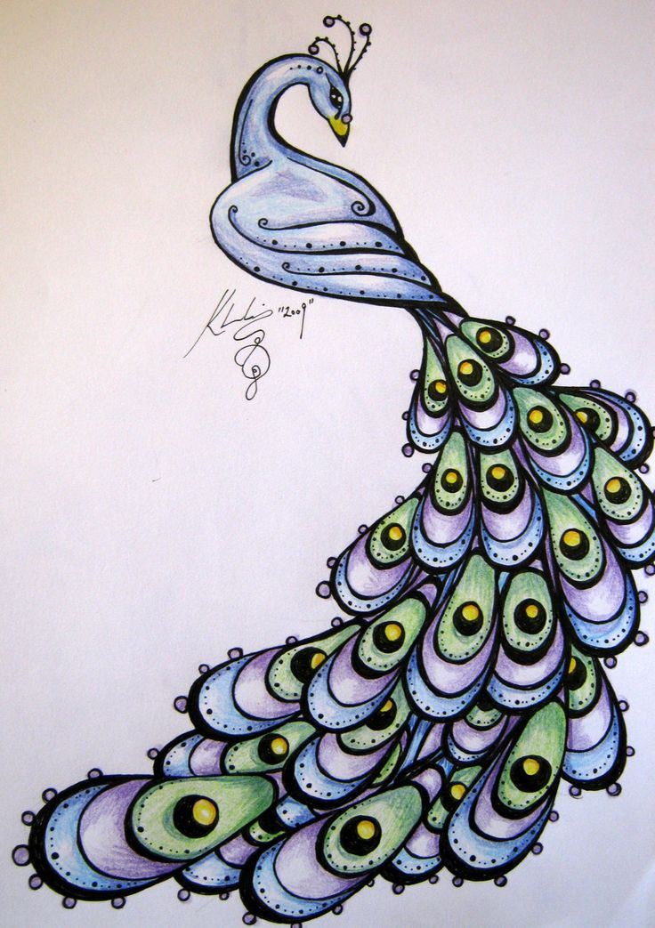 Peacock feather drawing tattoo - photo#31