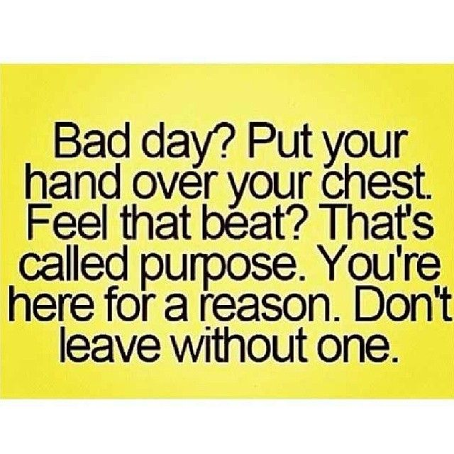 Best Bad Day Pick Me Up Pictures Image Collection