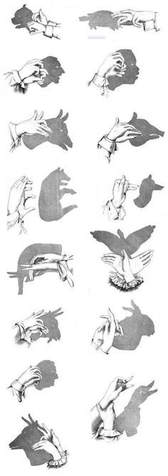 Make shadow theater yourself and let your hands play  – basteln