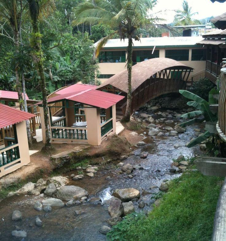 Guavate, Cayey, Puerto Rico stream, facing north