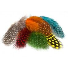Guinea Fowl Fly Tying Feathers The most beautiful fly tying featers, hand selected. We provide the best quality for our clients.
