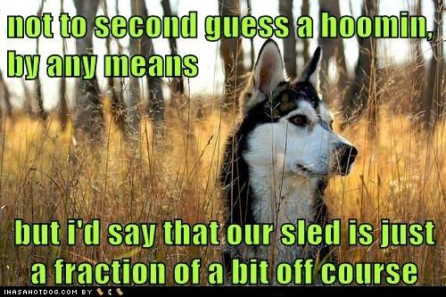 #Husky humor + #rescue: https://www.facebook.com/HuskyMomAtSiberianHuskyRescueOfFlorida
