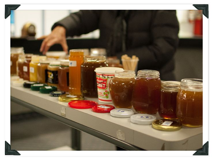 How do you judge honey?  Read our account of judging the annual local honey comp. to find out.