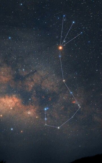 зашел туда фотографии звездного неба созвездие скорпион находится уютном