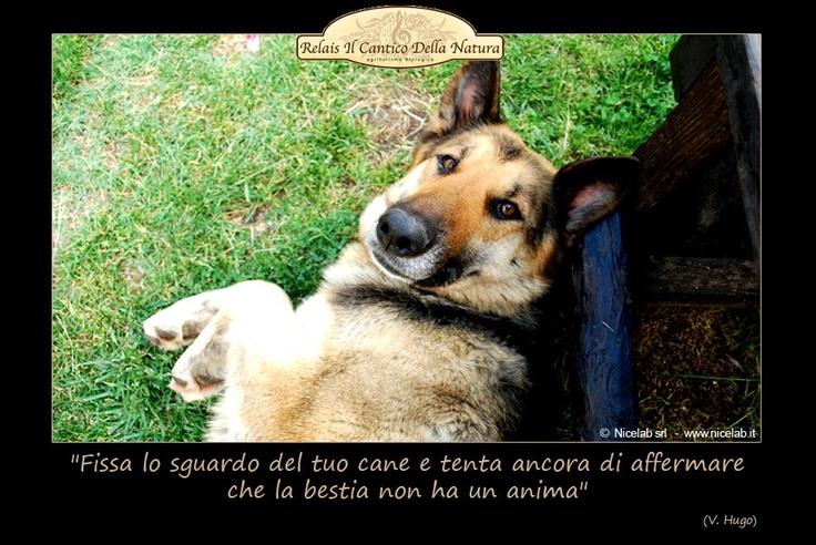 La #Sibilla che vigila sul nostro #relais romantico in Umbria!