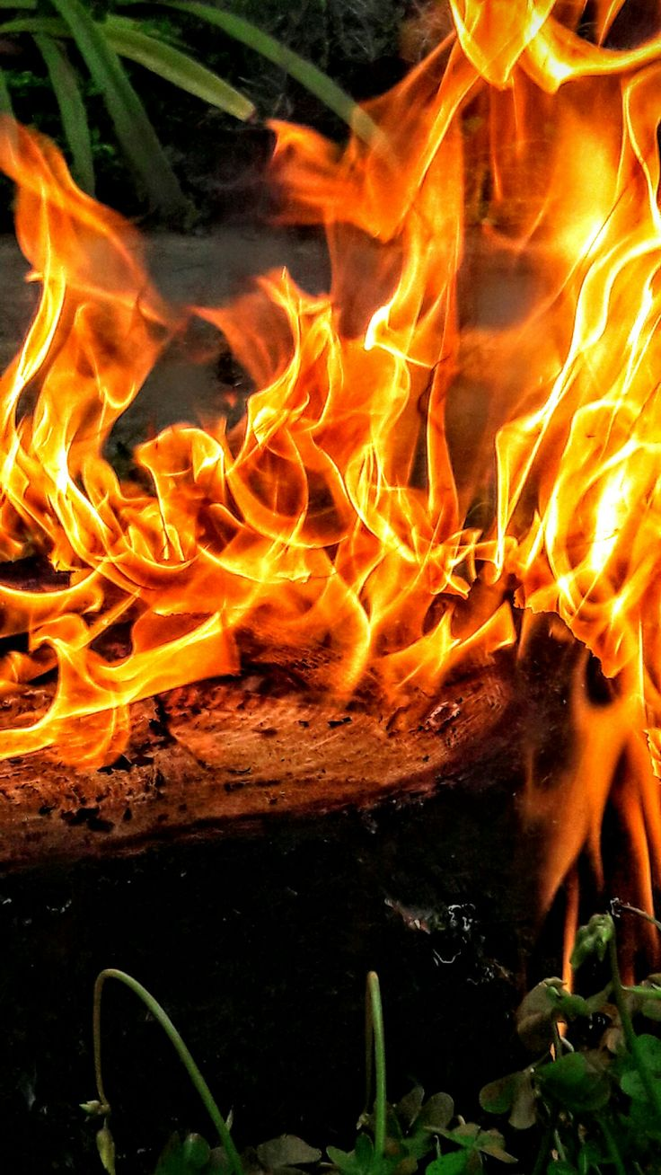 Fuego ...