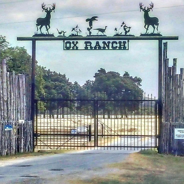 That's a pretty site!  Folks be sure and check out the @oxranch ~~~ Very cool place!  #deerhunting #hunters #predators #hunt #southtexashunting #stha #oxranch #texashunting  #mbranchkingblinds  #fishing #hunter #hunting  #huntingseason #deerfeeder #deerhorns #deerseason  #deer #turkey #turkeyseason #huntexotics #turkeyhunting #deercamp http://misstagram.com/ipost/1566968747494211086/?code=BW-_cYQh_4O