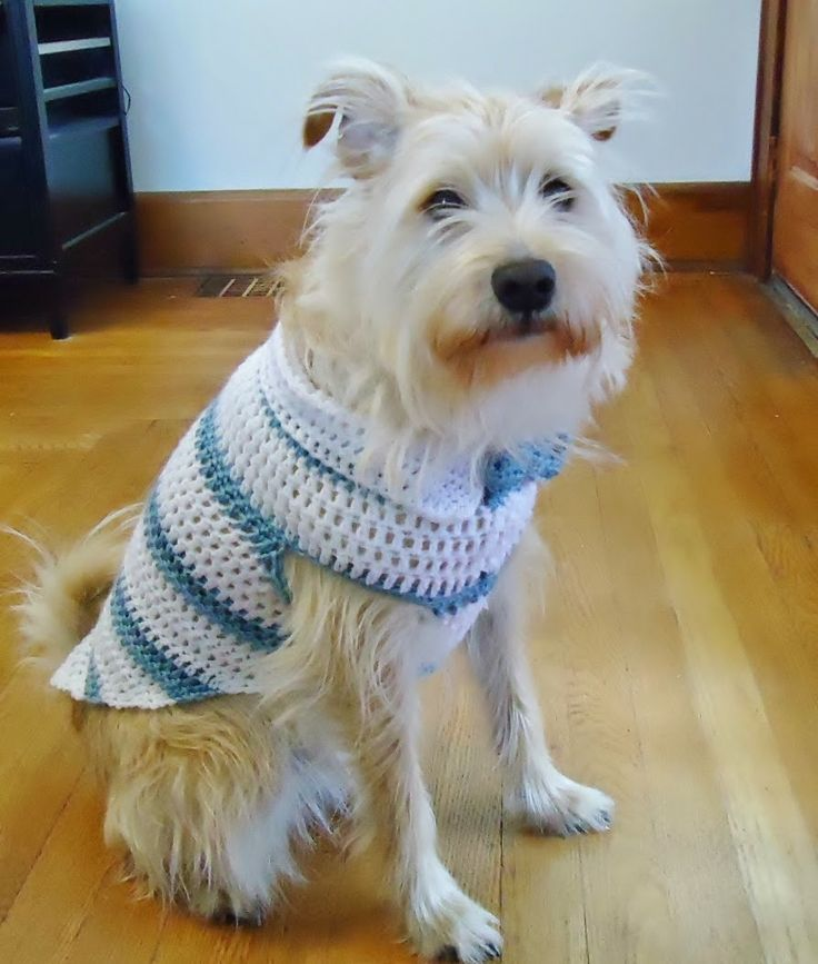 Striped Dog Sweater With Collar Free pattern. Crochet Pattern.  http://1crochetaddict.blogspot.com/