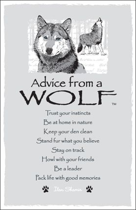 Advice from The Wolf.  AND This Advice is Why Humans and Wolves have Such A Deep Connection <3