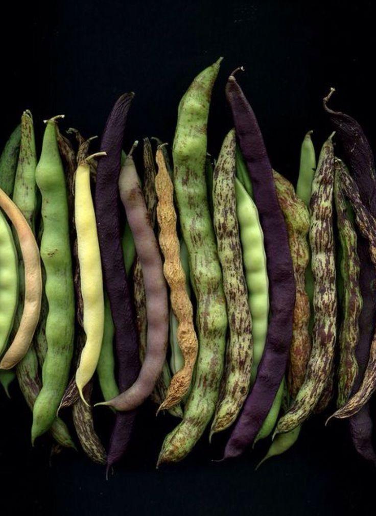Harvest peapods