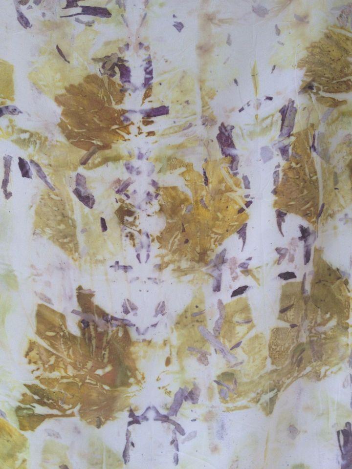 Irene Rasetti ~Steamed onion skins on silk~