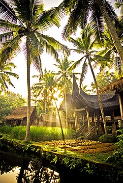 Land of the Minangkabau. A family village. Their homes are constructed from black bamboo from the surrounding forests.  || West Sumatra, Indonesia