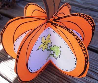"""I love this! the life cycle of a pumpkin, this is such a cute idea.. do with """"i am thankful for""""  ,,,,"""