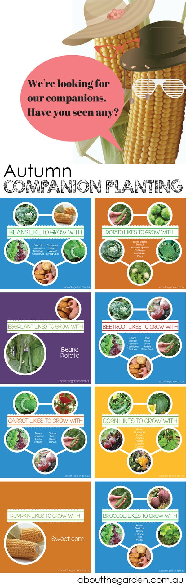 Vegetable #companion #plants #autumn INFOGRAM get the list http://bit.ly/1zFJ8xT (scheduled via http://www.tailwindapp.com?utm_source=pinterest&utm_medium=twpin&utm_content=post1213305&utm_campaign=scheduler_attribution)