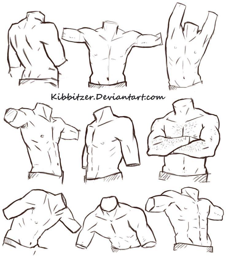 Male Torso Reference Sheet by Kibbitzer.deviantart.com on @DeviantArt
