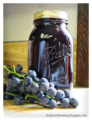 Canning grape juice concentrate!! Yum!! Rich in antioxidants and essential vitamins!