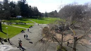 Time lapse at the quad  l  #UVic Think Fast video contest