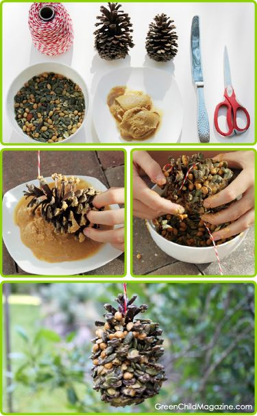 DIY Organic Nuts & Seeds Bird Feeder Craft ~ good project to get your kids/grands involved