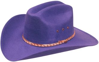 deb6e3ce314 purple cowboy hat