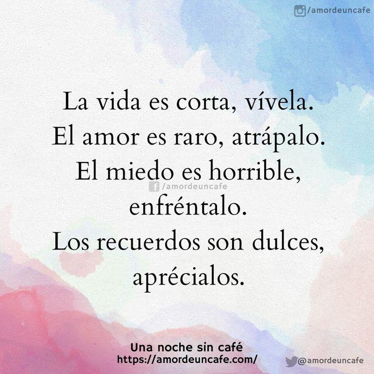 La vida es corta, vívela. El amor es raro, atrápalo. El miedo es horrible, enfréntalo. Los recuerdos son dulces, aprécialos.
