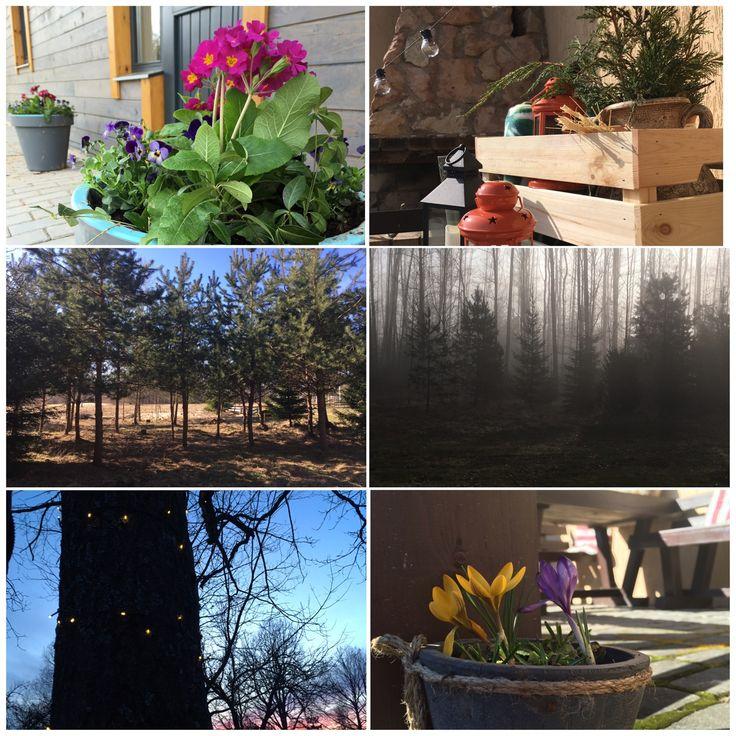 "Spring Mood in guest house ""Slokas"""