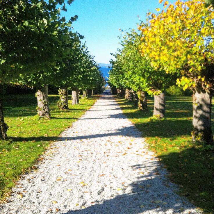 Fred for øyet med vakre symetrilinjer.Her fra Refsnesgod gods. #refsnes#refsnesgods#symmetri#jeløya#moss#norge#norway#østfold