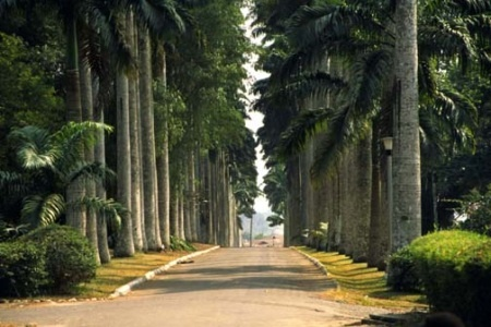 Aburi Botanical Gardens near Accra, Ghana