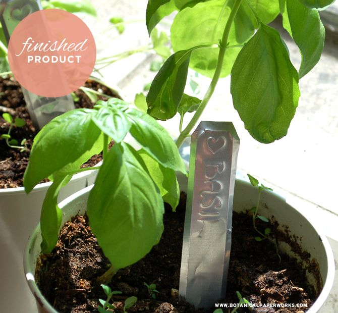 Easy DIY project: Up-cycled pop can rustic garden markers from the stylists at Botanical PaperWorks
