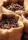 EL GRANO DE CAFE | Taty y su Mundo