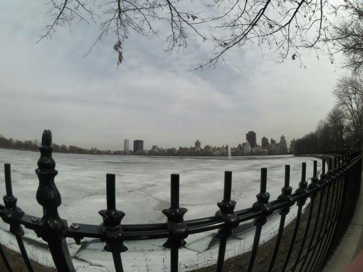 Central Park enneigé
