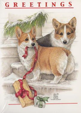 I Can't Wait For Christmas! Christmas card: two Pembroke Welsh Corgis on steps outdoors with a present.