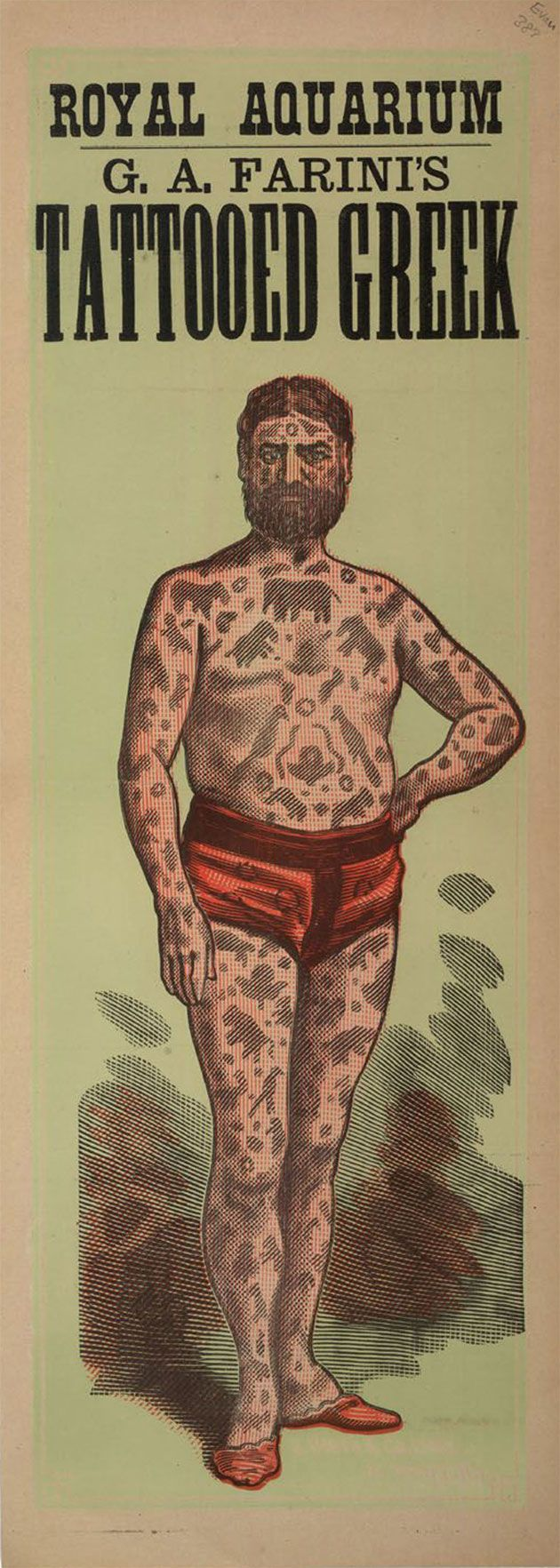 G.A.Farini's Tattooed Greek, 1880; The British Library Board