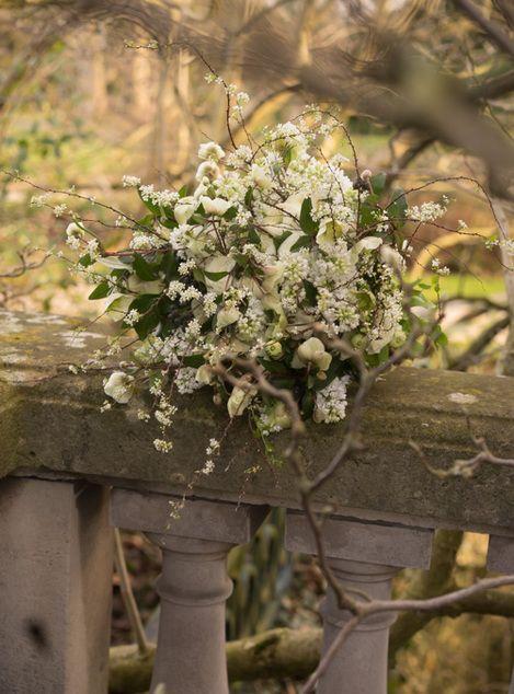 Bouquets champêtres ~Jardin du I'llony~ Atsushi Taniguchi