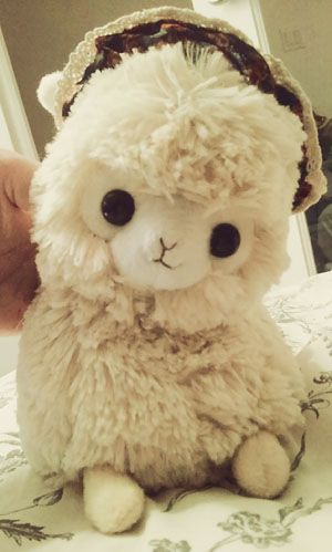 cute alpaca stuffed animal WANT!