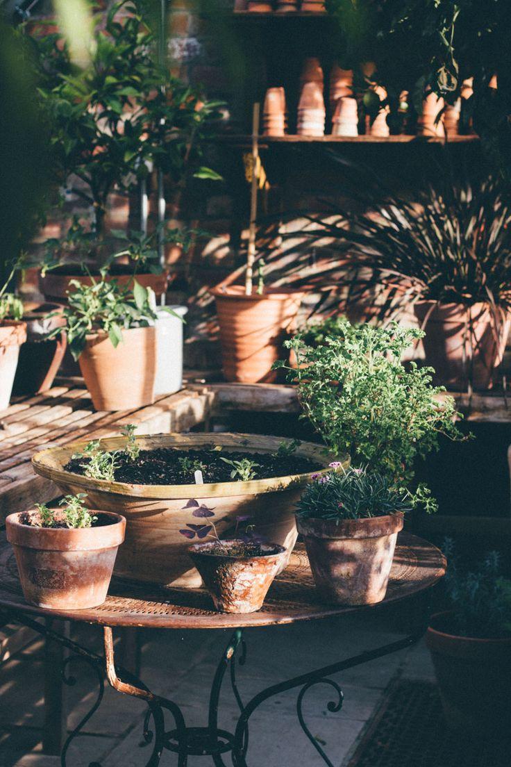 Soho Farmhouse - Greenhouse