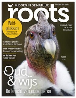 Proefabonnement: 3x Roots € 15,-: Roots is het tijdschrift met de…