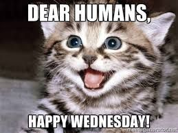 Funny Memes For Wednesday : Best wednesday memes images good morning hump