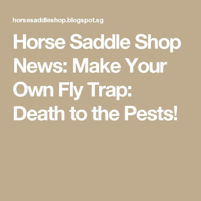 Horse Saddle Shop News: Make Your Own Fly Trap:  Death to the Pests!