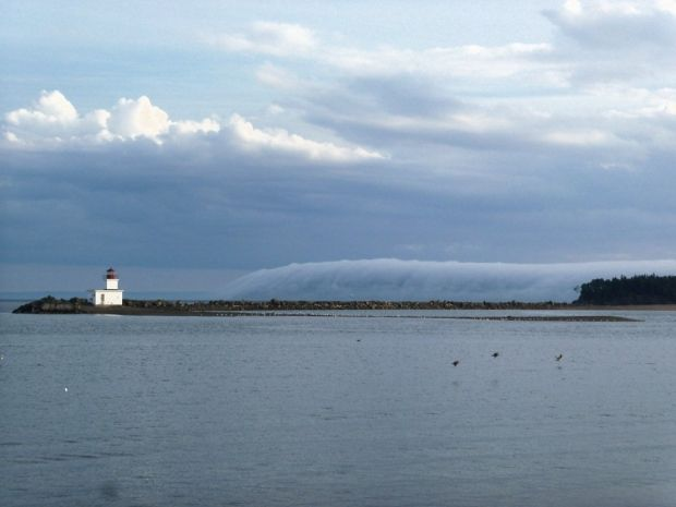 fog horn partridge island - Yahoo Search Results