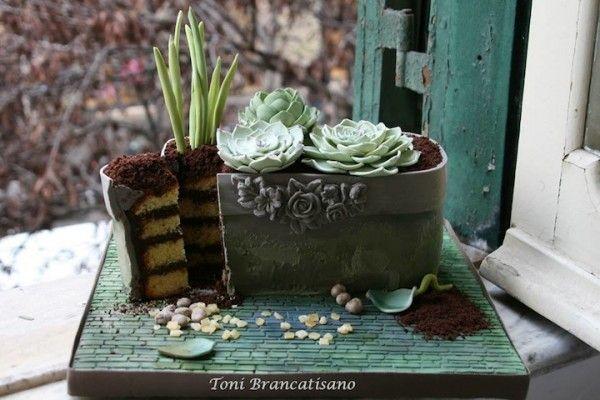 torta giardino di cactus