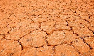 Le blog d'un catho écolo: Famine en Afrique et politiques internationales