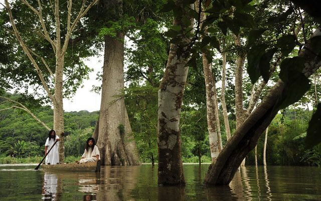 La Selva Lacandona   Todo Chiapas