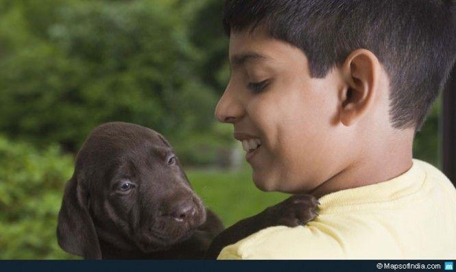 Pets Make The World Go Round