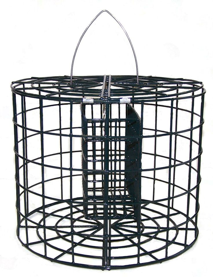 "CGSUET  Pole mountable caged suet basket Caged suet basket that can be either hung or mounted directly onto a 1"" steel pole"