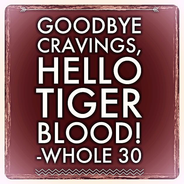 Day 23 and tiger blood is starting. Whats Tiger blood you ask? Read all about it here.