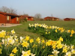 Spring time at Spindlewood Lodges Gallery