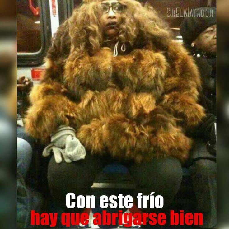 Bien abrigados no vaya a ser que les haga daño.  #Frio #Caliente #clima #abrigo #fail #coat #cold #tren #SrElMatador #ElSalvador #sivar