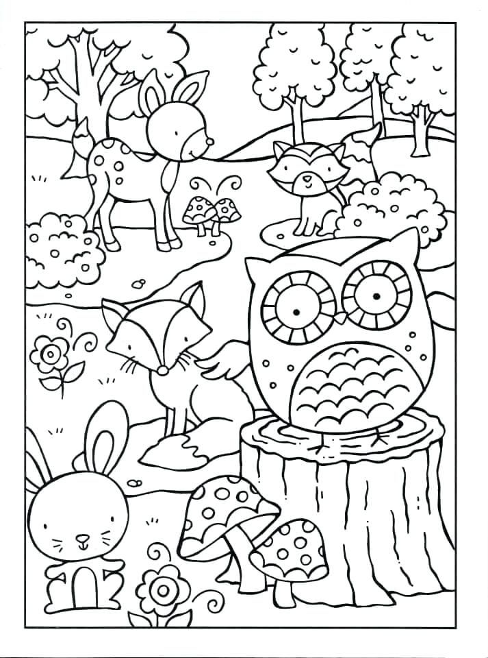 1060+ Woodland Animals Coloring Book Picture HD