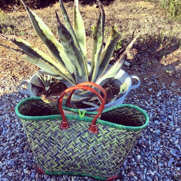 Tas en agave bij tipi Verde #groen